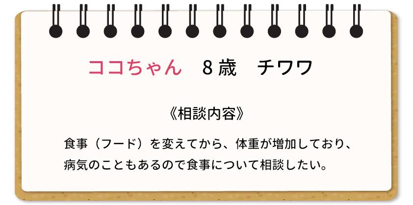 栄養相談01